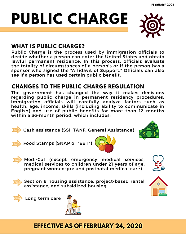 Public Charge - Website.png