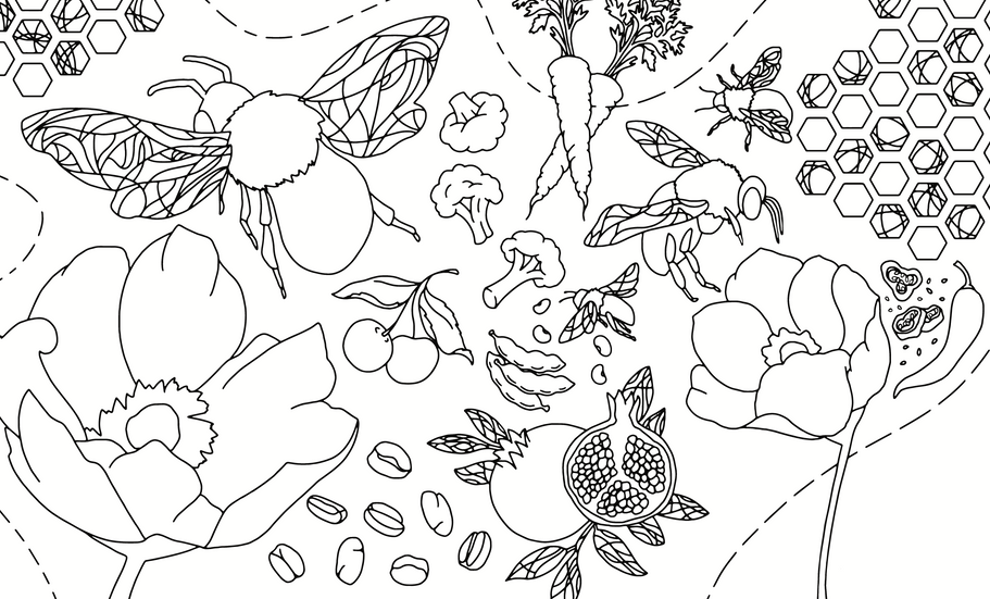 Bee_ColoringBookSpread-01.png