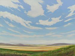 Prairie in August, Alberta