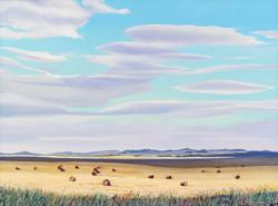 August Fields, Alberta