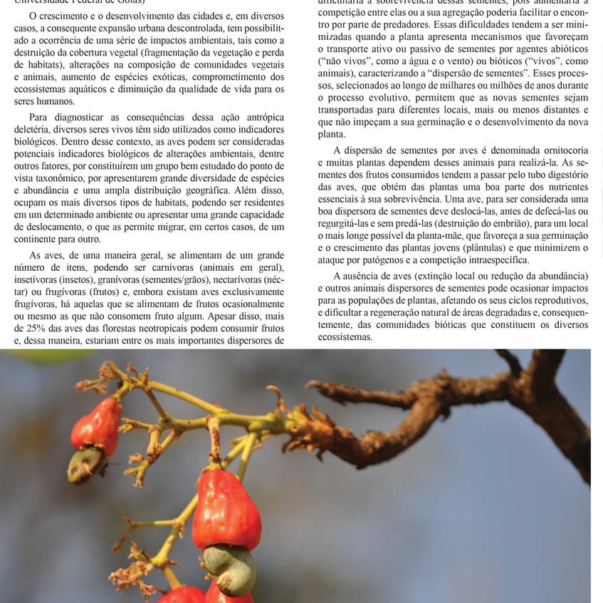 Jardim Botânico Amália Hermano Teixeira - Informativo - 2016
