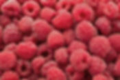 Raspberry organic fruit black currant gooseberry