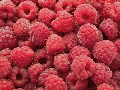 Raspberries - Living Healthy Moment