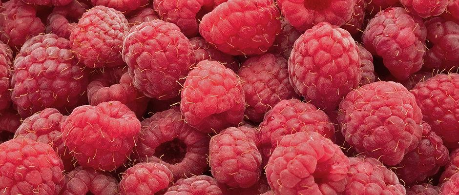 Red Raspberry Leaf Tea Packages