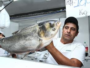 Ramiro Rosário defende realização da Feira do Peixe no Largo Glênio Peres