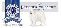 AKC Breeder of Merit Samoyeds