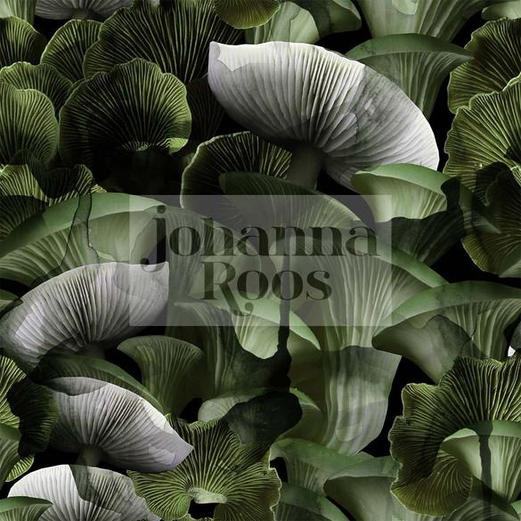 Mushroom_Rapport.jpg