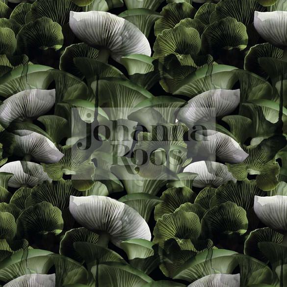 Mushroom_R.JPG