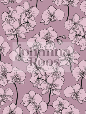 ORCHID LINES