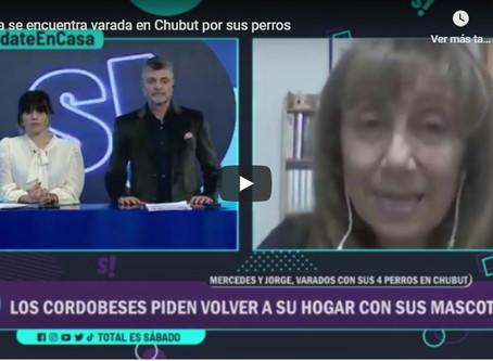 Jubilados cordobeses están varados en Chubut por sus perros