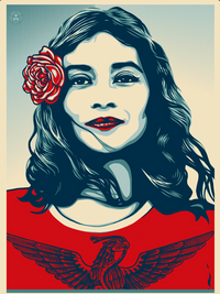 We the People Poster: Defend Dignity