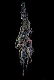 Medusa, 1975