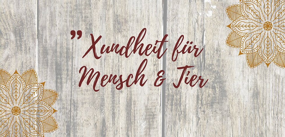 Xundheit_für_Mensch_&_Tier_(3).png