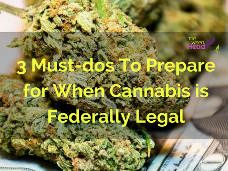 3 Must-dos to Prepare for When Cannabis is Federally Legal