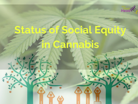 Status of Social Equity in Cannabis
