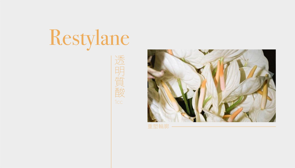 Restylane 透明質酸