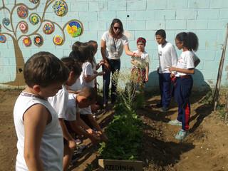 Visita à Escola Vera Babo para conhecer o sistema de compostagem - 2 Ano B | set/2016