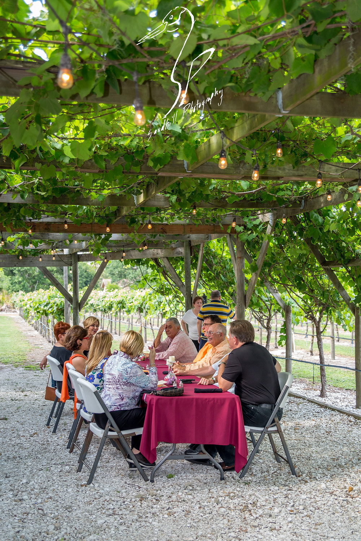 Fiorelli Winery & Vineyard wine 'n dine Bradenton vine canopy eating friends