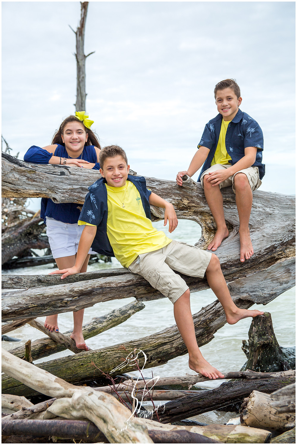 Longboat Key Family Photographer, siblings relax on the driftwood for a family portrait at Beer Can Island