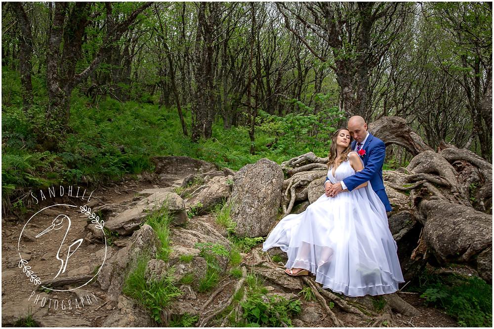 Destination Wedding Photographer, wedding portrait Craggy Gardens NC, image by Sandhill Photography, Bradenton FL