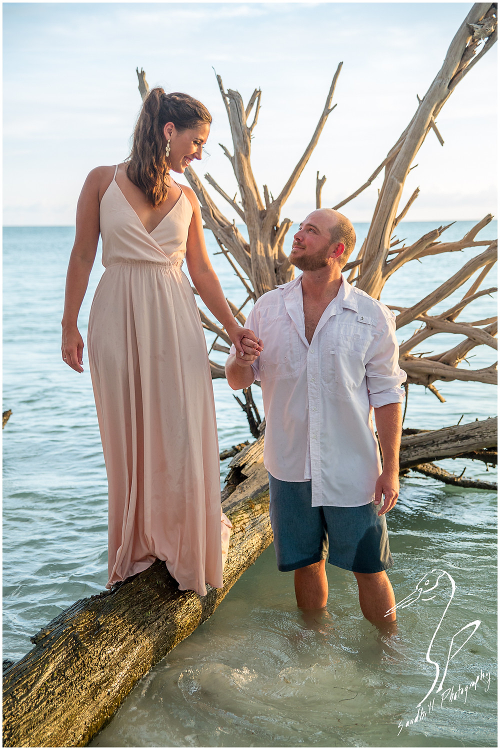 Beer Can Island Engagement Photography, Engaged man stands in the water and holds his fiance's hand as she walks on drift wood, Longboat Key