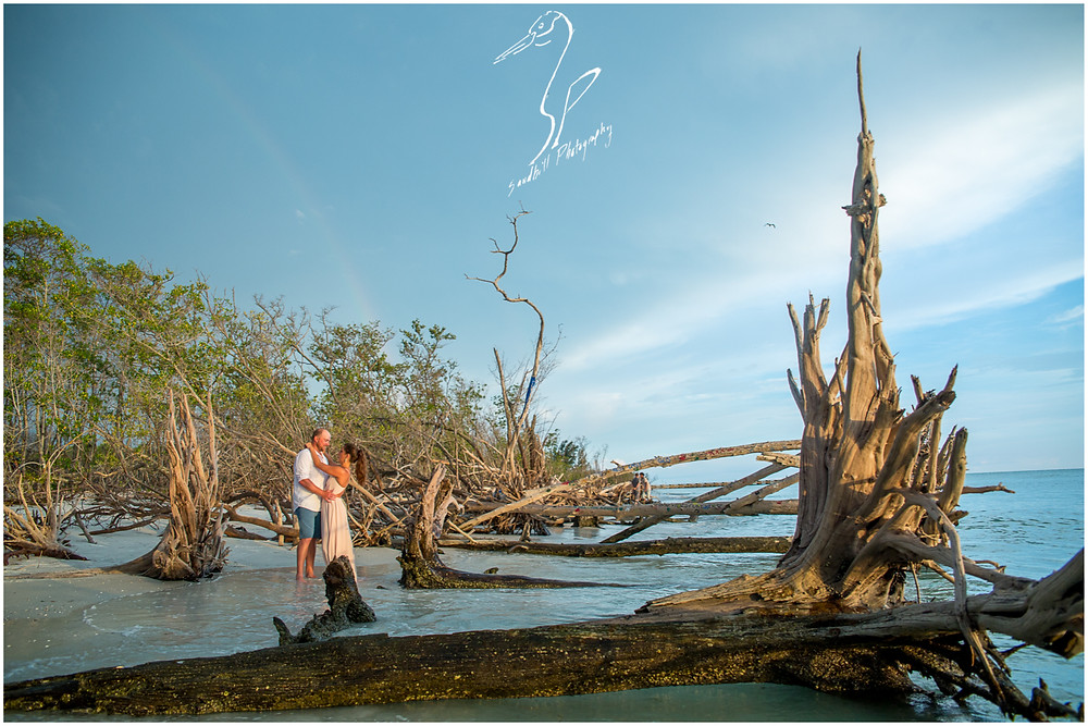 Beer Can Island Engagement Photography, couple on a drift wood covered beach with a faint rainbow in the background.