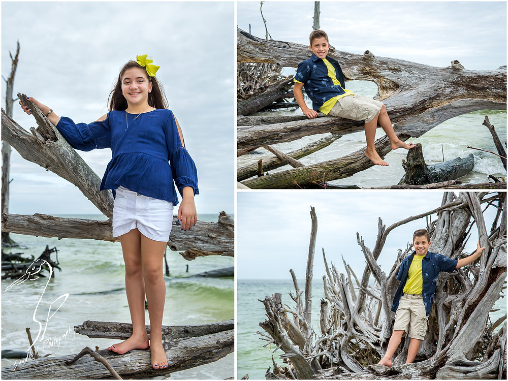 Longboat Key Family Photographer, children climb on drift wood for a portrait at Beer Can Island