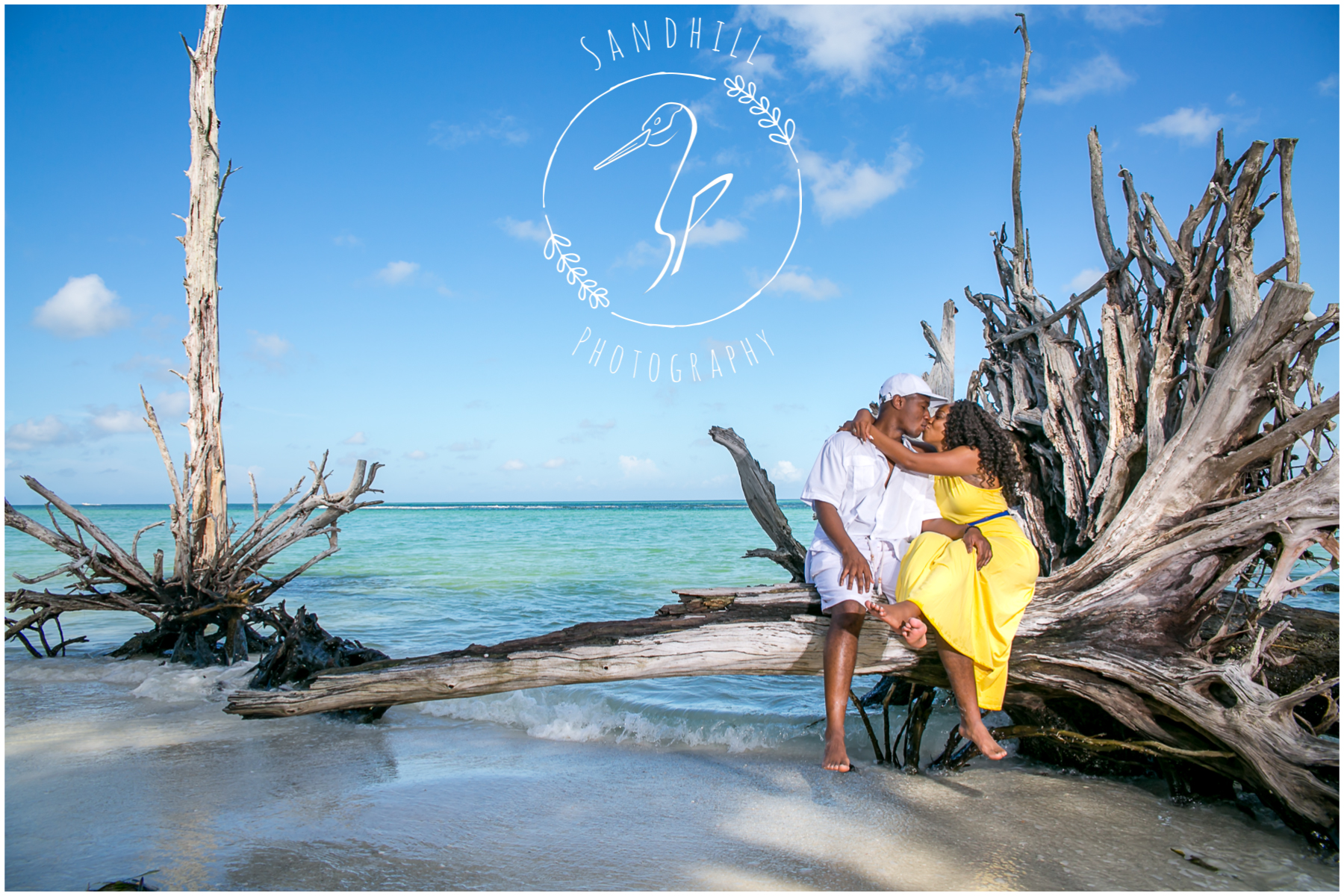 Beer Can Island Proposal Sandhill Photog