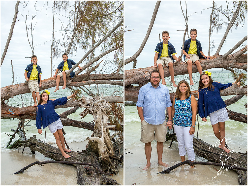 Longboat Key Family Photographer, a family climbs a fallen tree for a portrait at Beer Can Island
