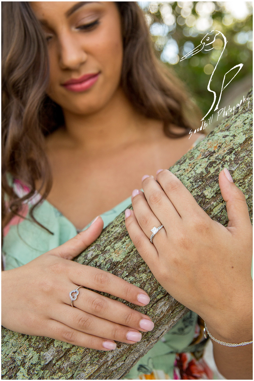 DeSoto National Memorial Photography, an engaged woman wraps her hands around a tree branch, highlighting her engagement ring in the forefront