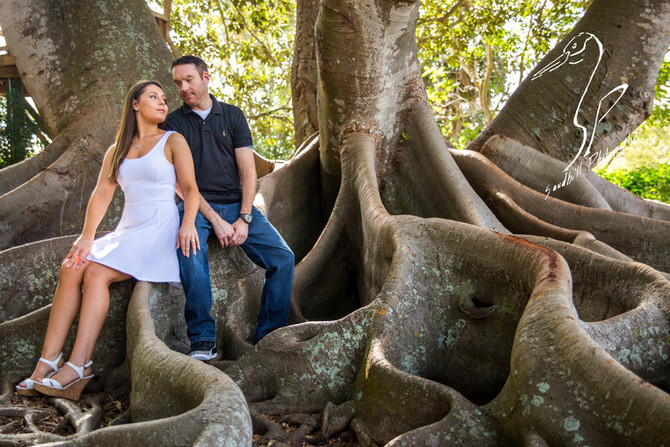 Selby Gardens Engagement Photography | Alina & Brent