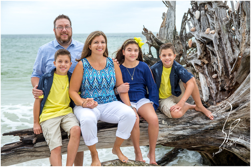 Longboat Key Family Photographer, Family portrait on a drift wood log by the ocean at Beer Can Island