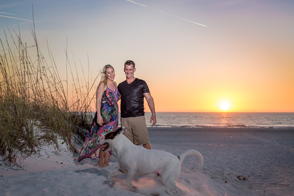 Coquina Beach Photography Romantic Beach Ocean Dunes Anna Maria Island Sunset Dog