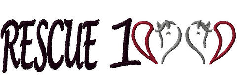 R100 Logo.JPG