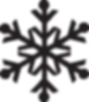 negro del copo de nieve