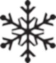 noir flocon de neige