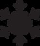 Black Snowflake