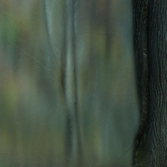 ppblue blur.jpg
