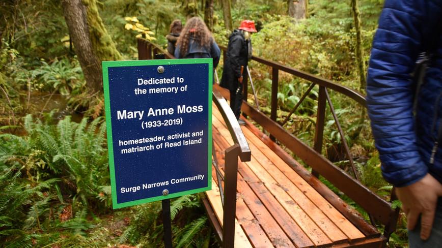 MaryAnne Moss Salmon Observation Bridge