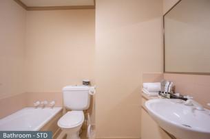 Bathroom - STD.jpg