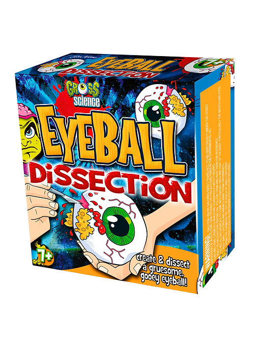 Eyeball Dissection