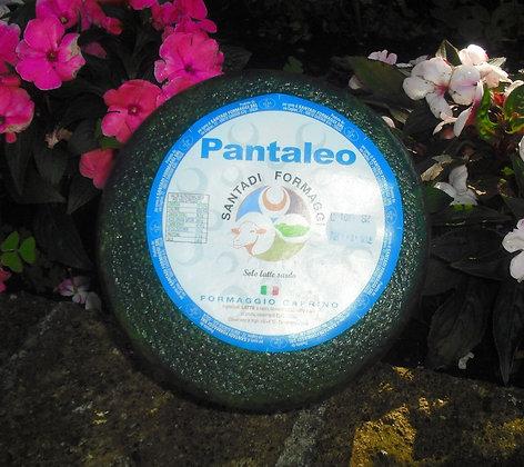 Capra Pantaleo (Colosio Formaggi e Latticini)
