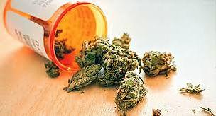 Medical Weed.jfif