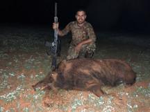 Pig8.jpg