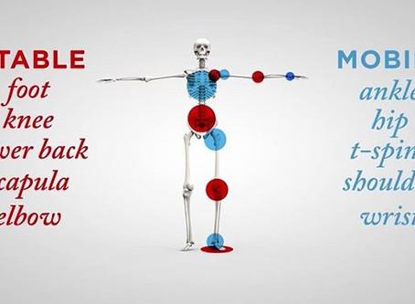 Low Back Pain & Compensation