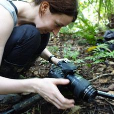 Photographing the famous dart frogs of Tambopata, Peru