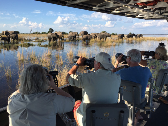Photography in Action - The Chobe, Botswana