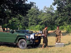 Bandhavgarh, The Tiger Photography Workshop/Safari