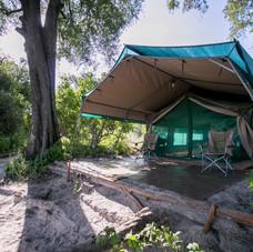 Delta Safari Camp Accomoddation