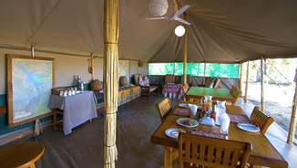 bush photo camp